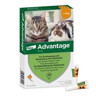 Advantage 40 mg für kl.Katzen und kl.Zierkaninchen  bei vitaapotheke.eu bestellen