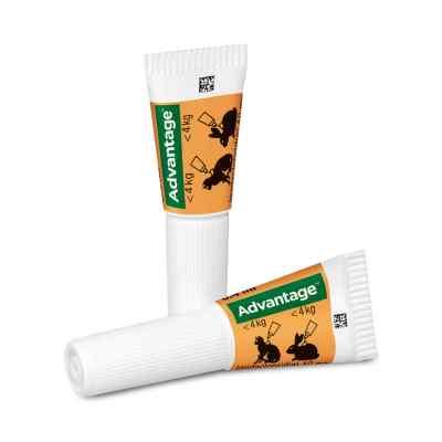 Advantage 40 mg für kl.Katzen und kl.Zierkaninchen  bei apo.com bestellen