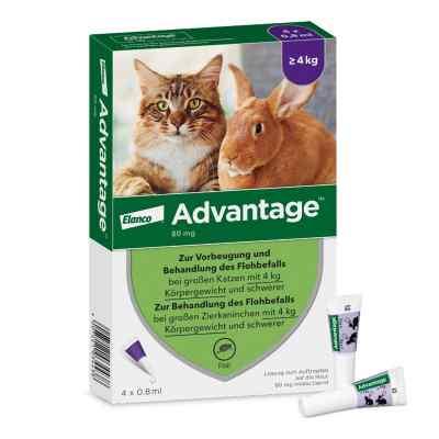 Advantage 80 mg für gr.Katzen und gr.Zierkaninchen  bei vitaapotheke.eu bestellen