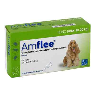 Amflee 134 mg Lösung zur, zum Auftropfen für mittelgr.Hunde  bei apo.com bestellen