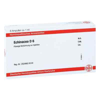 Echinacea D 6 Ampullen  bei apo.com bestellen
