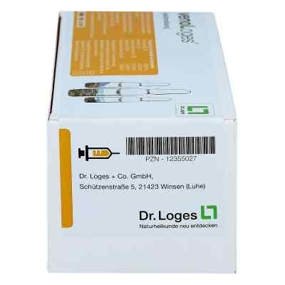 Veno Loges Injektionslösung Ampullen  bei apo.com bestellen