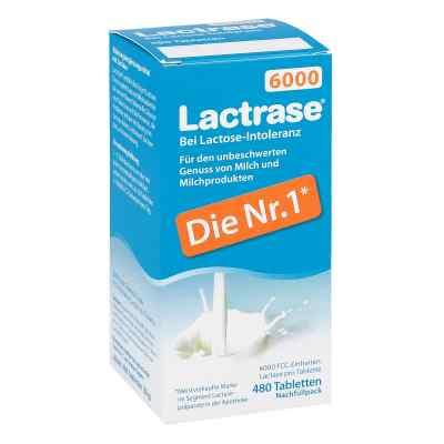 Lactrase 6.000 Fcc Tbl.klickspender Nachfüllpack  bei vitaapotheke.eu bestellen