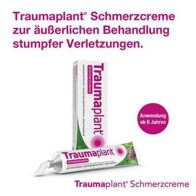 Traumaplant Schmerzcreme  bei apo.com bestellen