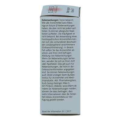 Ceres Ribes nigrum folium Urtinktur  bei apo.com bestellen