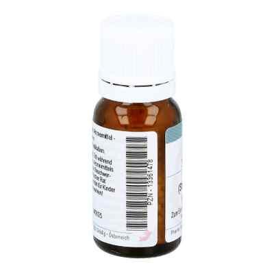 Nux Vomica D12 Globuli  bei apo.com bestellen