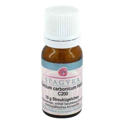 Calcium Carbonicum Hahnemanni C200 Globuli  bei apo.com bestellen