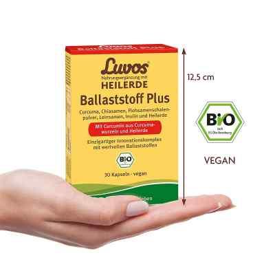 Luvos Heilerde Bio Ballaststoff Plus Kapseln  bei apo.com bestellen