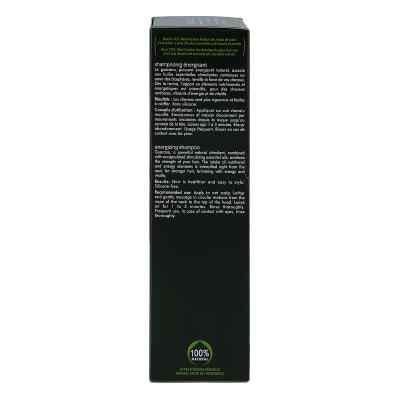 Furterer Forticea vitalisierendes Shampoo  bei apo.com bestellen