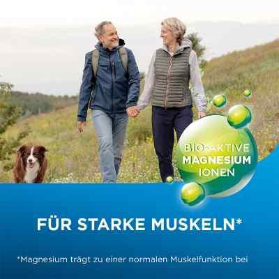 Biolectra Magnesium 300 mg Liquid  bei apo.com bestellen