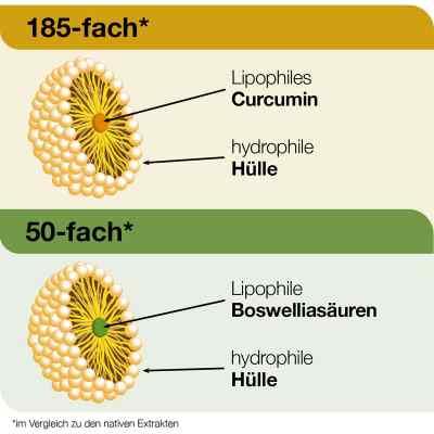 Curcumin-loges plus Boswellia Kapseln  bei apo.com bestellen