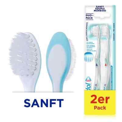 Meridol Zahnbürste sanft Doppelpack  bei apo.com bestellen